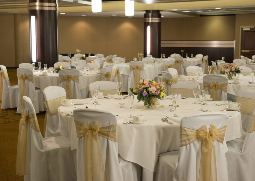 Kalamazoo Room Reception Setup, Chair Covers